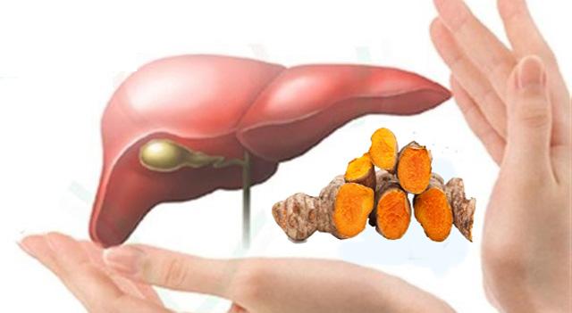 Curcumin có thể giải độc và bảo vệ gan ra sao ?