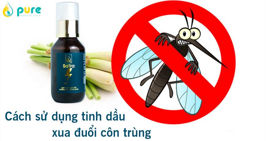 Cách sử dụng tinh dầu thiên nhiên để xua đuổi các loại côn trùng