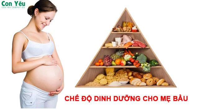 Dinh dưỡng cho mẹ bầu cần và đủ