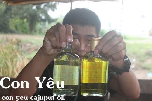 Phân biệt dầu tràm nguyên chất
