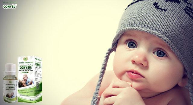 Tinh dầu khuynh diệp là gì – dầu khuynh diệp cho bé – Dầu khuynh diệp con yêu