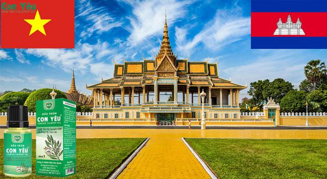 Tinh dầu tràm nguyên chất tại Campuchia – Dầu tràm con yêu