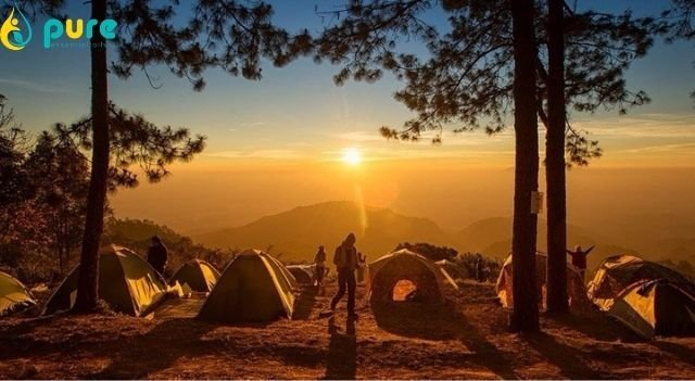 Kinh nghiệm tránh côn trùng đốt khi đi cắm trại đơn giản dễ làm