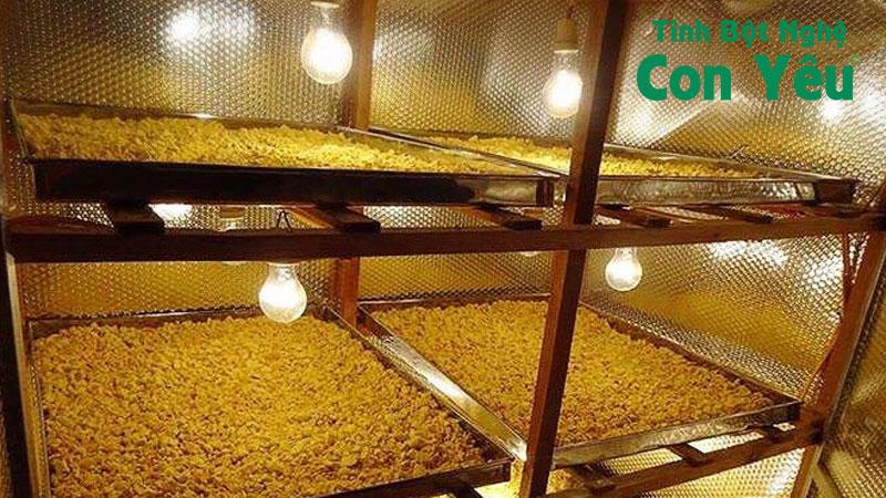 Giá bán tinh bột nghệ vàng